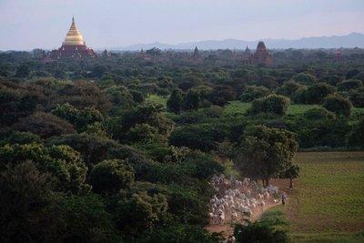 08as_Myanmar_21_2016_9200.jpg