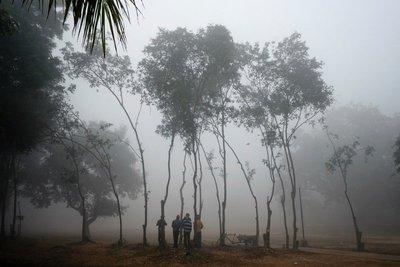 Fog in New Delhi