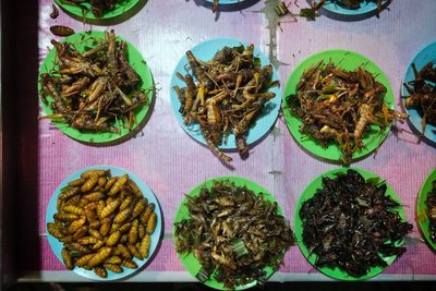 Assorted deep fried critters, Ayutthaya, Thailand
