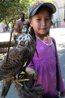 Young girl with her pet falcon, Bishkek