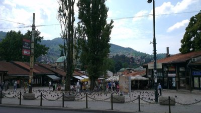 IMAG2008.jpg