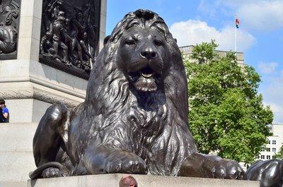 Trafalgar square lion.