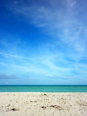 Miami1__1_.jpg