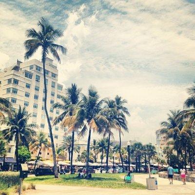Miami1 (3)