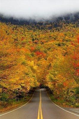 Vermontt.jpg