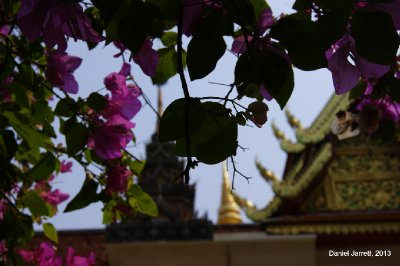 Flowers and Temple