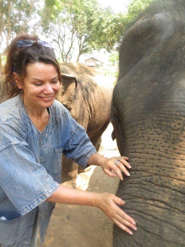 Fedding Elephants