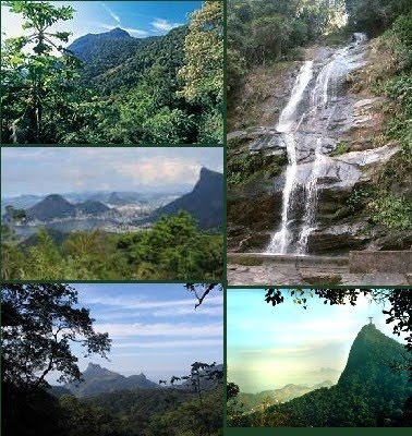 Tijuca National Park