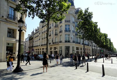 Trees and buildings along Champs Elysees