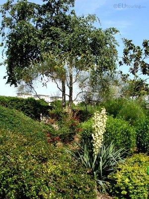Gardens at Jardin Tino Rossi