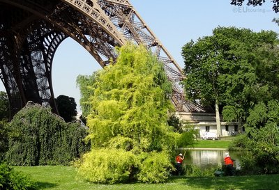 Maintaining the gardens at the Eiffel