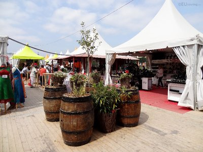 Wine barrels and plants within a market