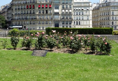 Flowers in Square de l'Ile de France