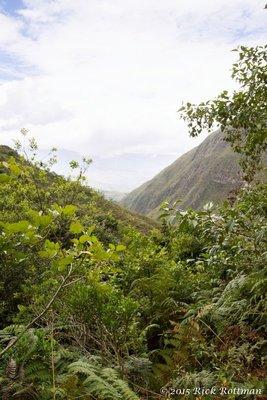 Day 40- Huembo View