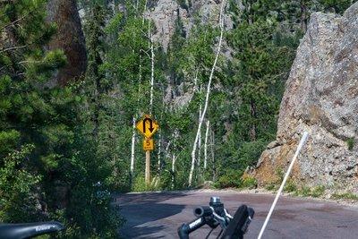 Needles Highway 6