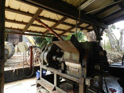 Rum aus Zuckerrohr destilliert
