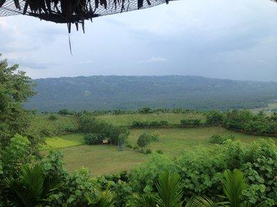 the Kawakawa Hill