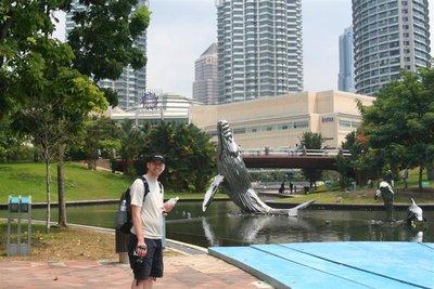 SV2008 - AC cetacean