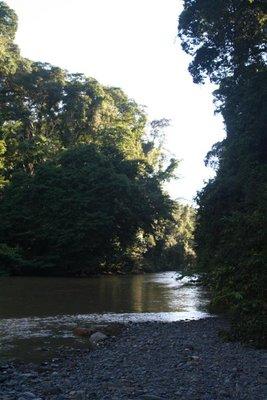 IMG_6017 Danum River
