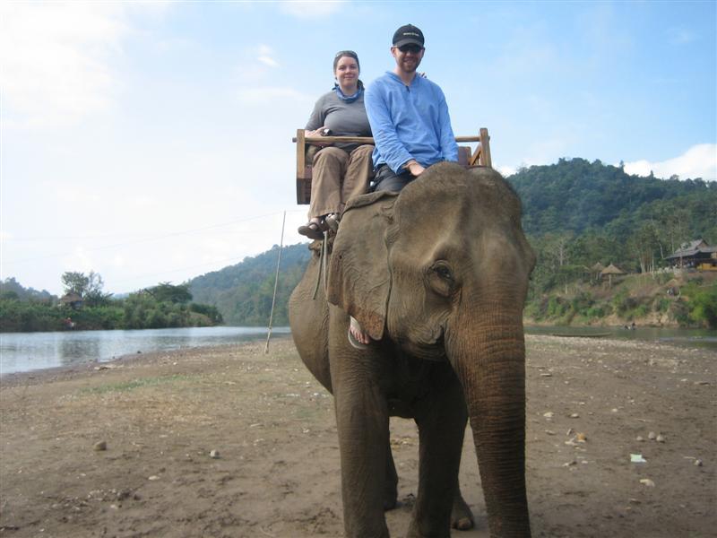 CW, AC, elephant2