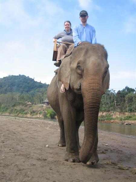 CW, AC, elephant1
