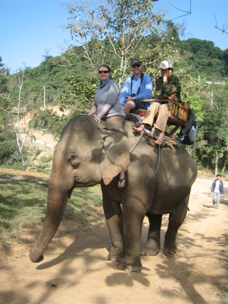 CW, AC, elephant