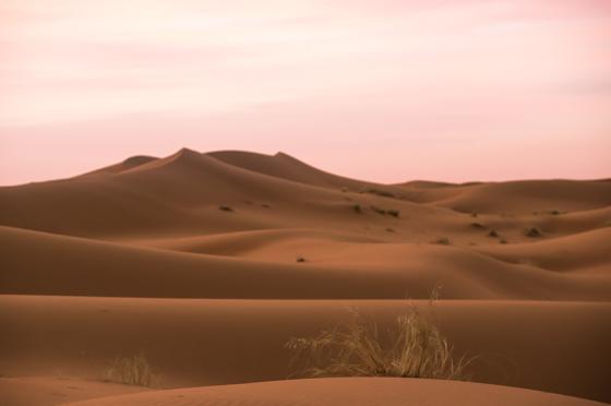 large_Morocco-6320.jpg
