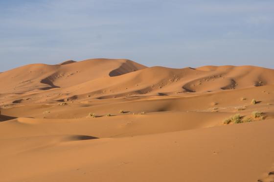 large_Morocco-6409.jpg