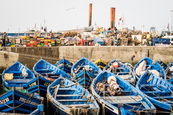 large_Morocco-6673.jpg