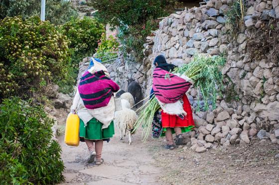 large_Peru_-_UNOS__426_of_54_.jpg