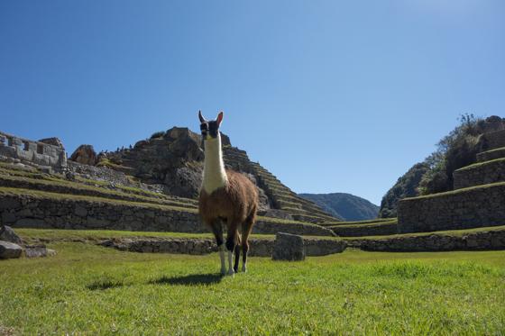 large_Peru_Sony__3037_of_60_.jpg