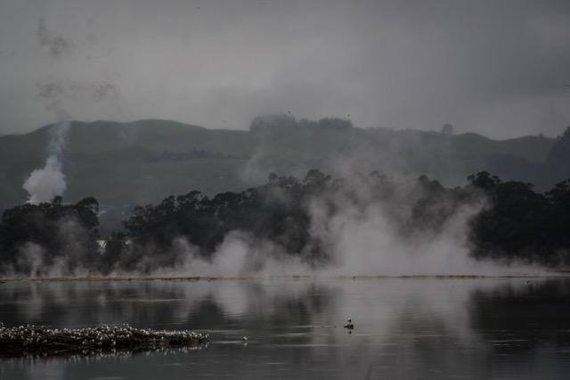 large_Rotorua-8050.jpeg