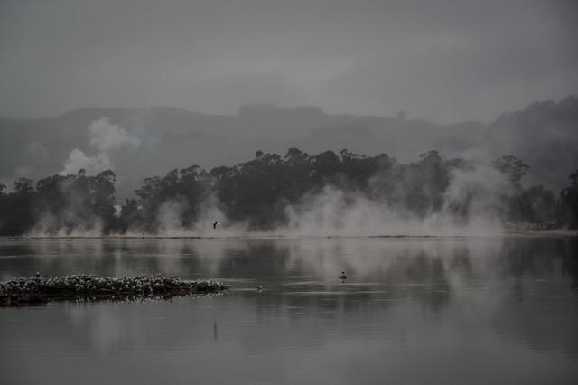 large_Rotorua-8068.jpeg