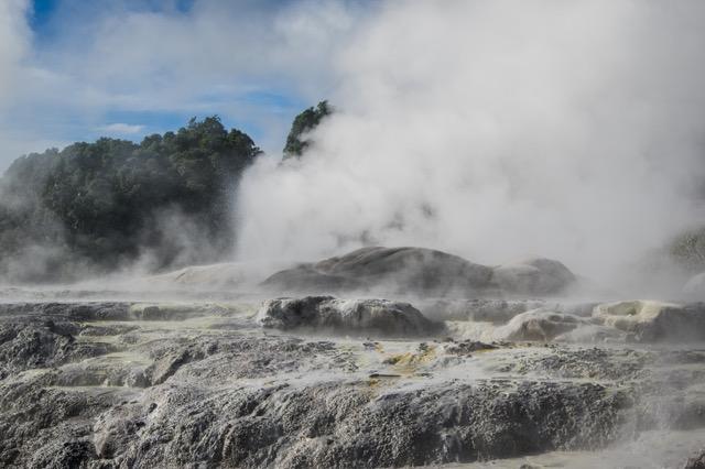 large_Rotorua-8189.jpeg