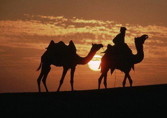 Tours Rajasthan India
