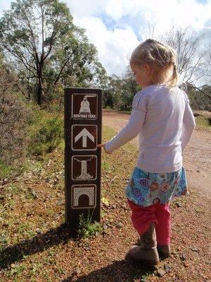 Train, arrow, waterfall, tunnel... I choose... waterfall!