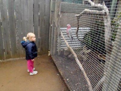 Sonia enjoying the birds