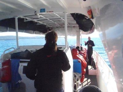 Bruny Island Cruise Boat