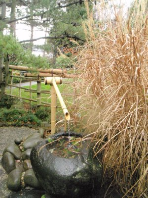 Bamboo water fountain, Royal Tasmanian Botanical Gardens