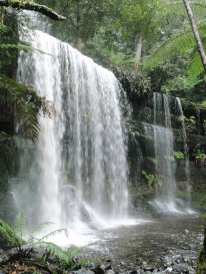 Russell Falls, Mt Field NP