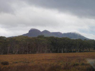 Mountainous grassland