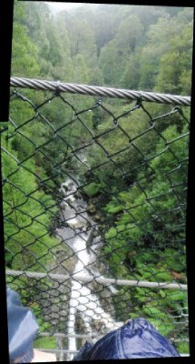 View from suspension bridge near Montezuma Falls