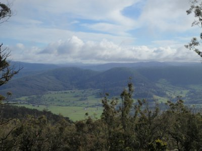 Ben Lomond National Park Campsite View
