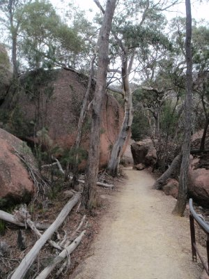 Walk to Wineglass Bay Lookout