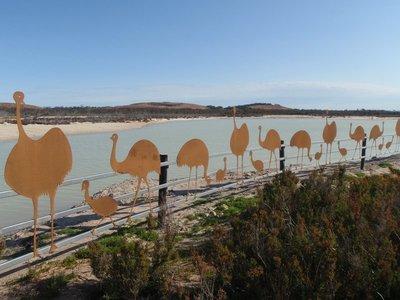 Emu fence near Lake Magic