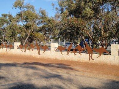 Kangaroo fence near caravan park at Wave Rock