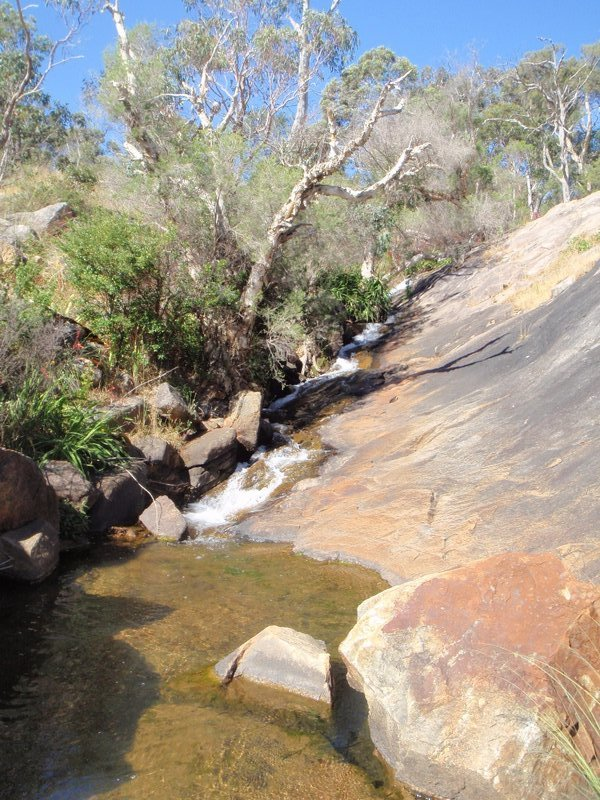 Whistlepipe Gully Creek