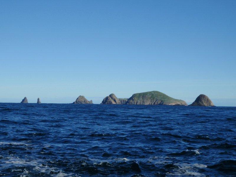 Bruny Island Cruise