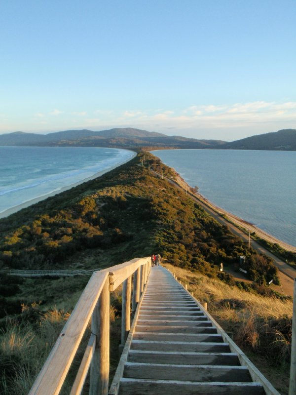 The Neck Lookout steps, Bruny Island