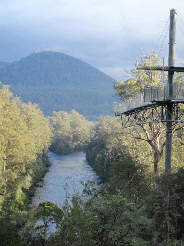 Tahune Airwalk and the Huon & Picton RIvers